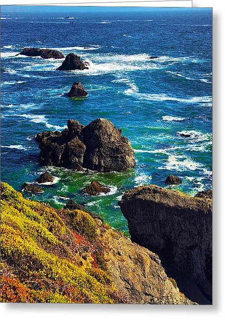 Colors Of The Pacific Greeting Card by Joe Urbz