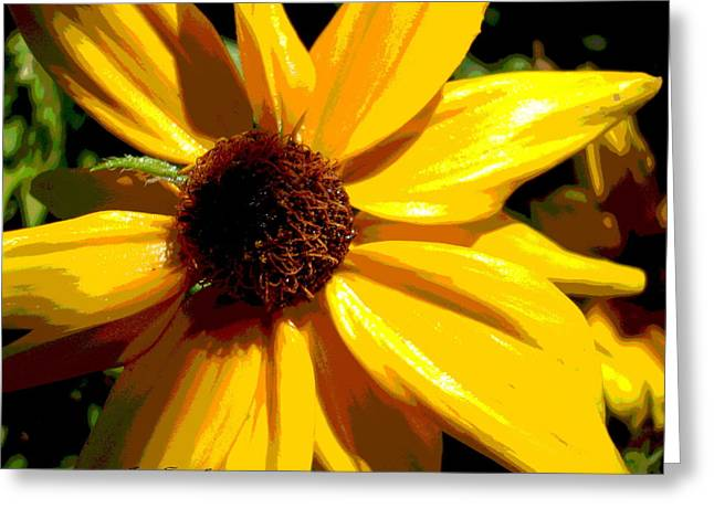 Colors Of The Sun Greeting Card