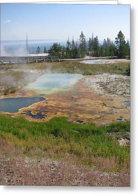 Greeting Card featuring the photograph Colors Of Yellowstone by Shawn Hughes