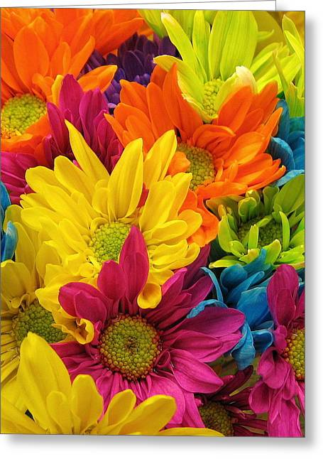Colossal Colors Greeting Card