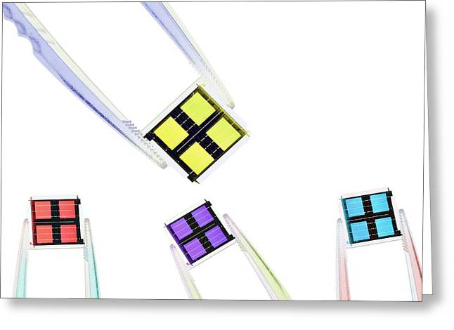 Coloured Microchips Greeting Card by Gombert, Sigrid