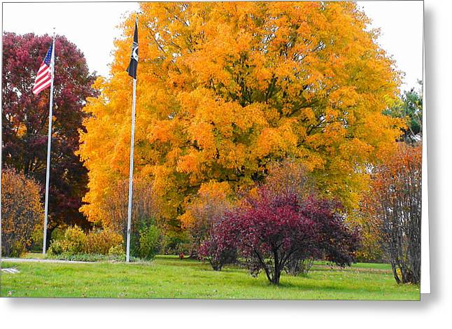 Colours Of Fall Greeting Card
