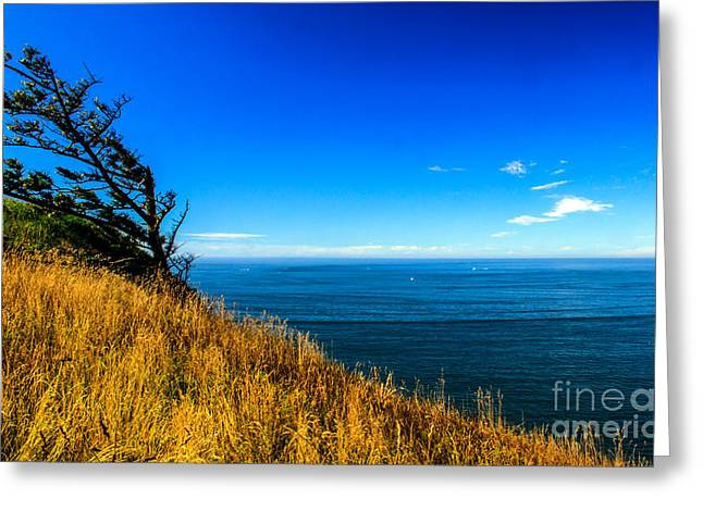 Columbia River Greeting Card by Robert Bales