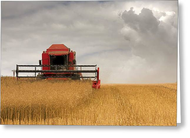 Combine Harvester, North Yorkshire Greeting Card by John Short