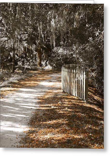 Come Follow Me Greeting Card by Carolyn Marshall