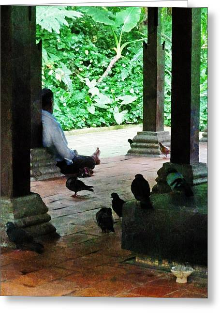 Communing With The Birds Greeting Card by Steve Taylor
