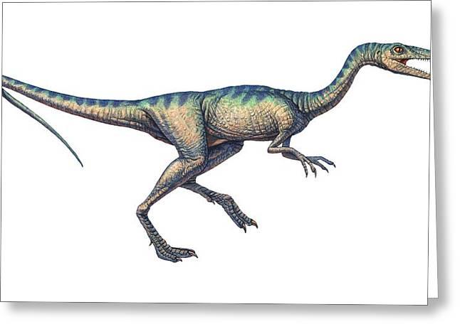 Compsognathus Dinosaur, Computer Artwork Greeting Card by Joe Tucciarone