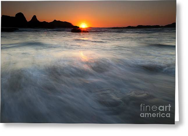 Concealed By The Tides Greeting Card by Mike  Dawson