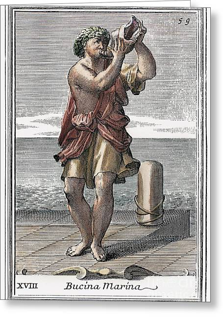 Conch Shell Trumpet, 1723 Greeting Card
