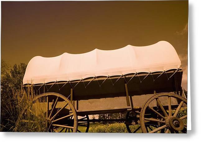Conestoga Wagon Greeting Card by Darren Greenwood