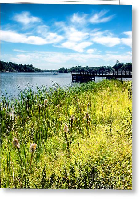 Congamond Lake Greeting Card by HD Connelly