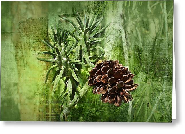Conifer Cone Greeting Card by Michael Greenaway