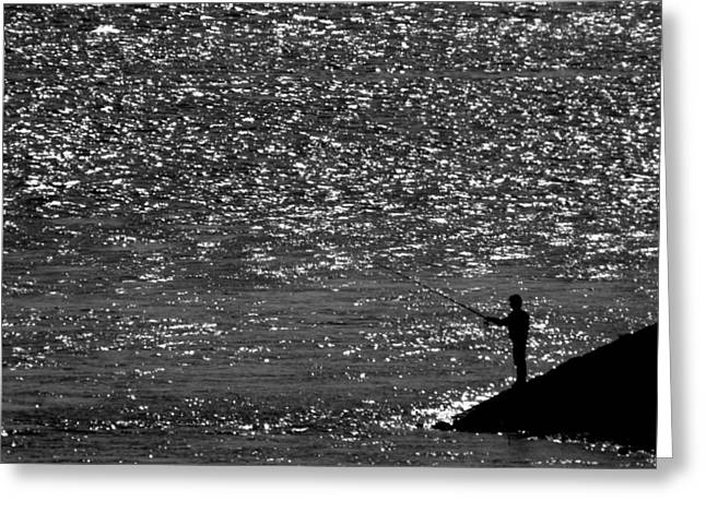 Contrast Greeting Card by Janos Vajda Photograph Art