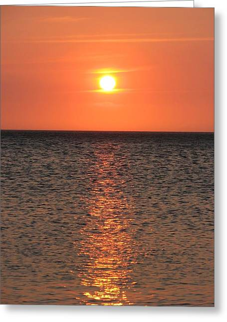 Conversation With The Sun Greeting Card by Gal Moran