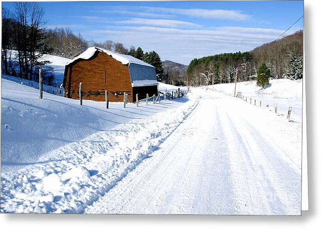 Coon Creek Road And Snow Greeting Card by Thomas R Fletcher