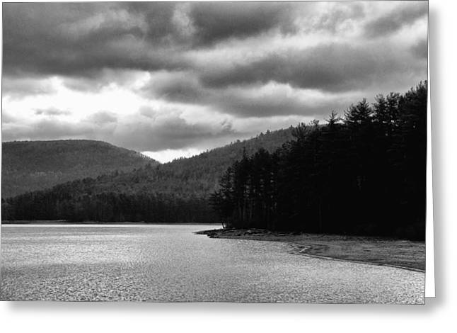 Greeting Card featuring the photograph Cooper Lake Monochrome by Nancy De Flon