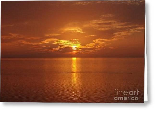 Copper Sun Photograph by Jennifer Story
