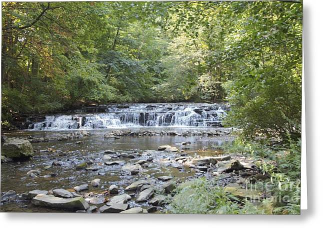 Greeting Card featuring the photograph Corbetts Glen Waterfall by William Norton