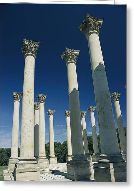 Corinthian Columns From The Us Capitol Greeting Card by David Evans