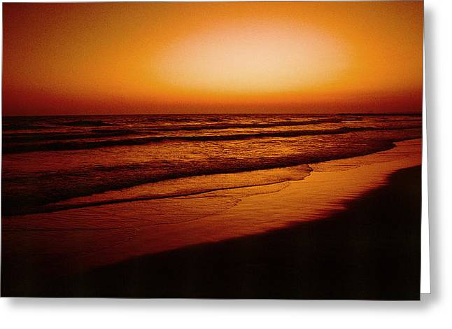 Corona Del Mar Greeting Card by Mark Greenberg