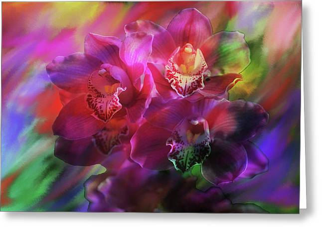 Coronation Orchids  Greeting Card