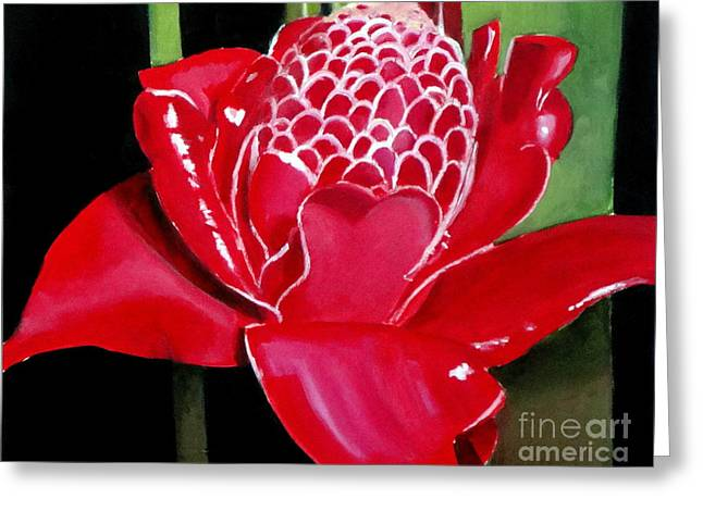 Costa Rican Beauty Greeting Card