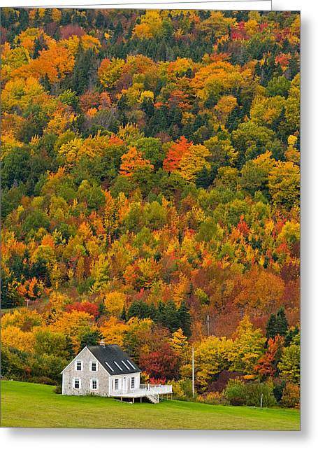 Cottage In Front Of Autumn Colours Greeting Card by John Sylvester