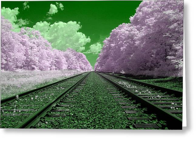 Cotton Candy Trees Greeting Card by Steve Gravano