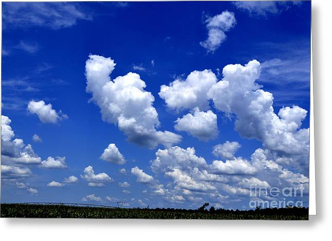 Greeting Card featuring the photograph Cottoncandy Sky by Tamera James