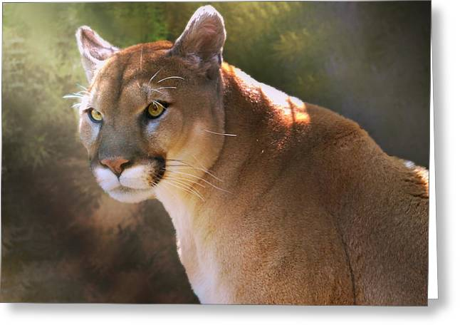 Greeting Card featuring the digital art Cougar by Mary Almond