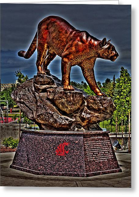 Cougar Pride Greeting Card by David Patterson