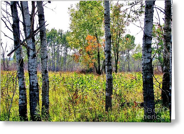 Country Autumn Greeting Card by Marilyn Smith