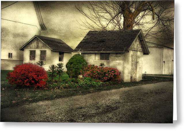 Greeting Card featuring the photograph Country Charm by Mary Timman