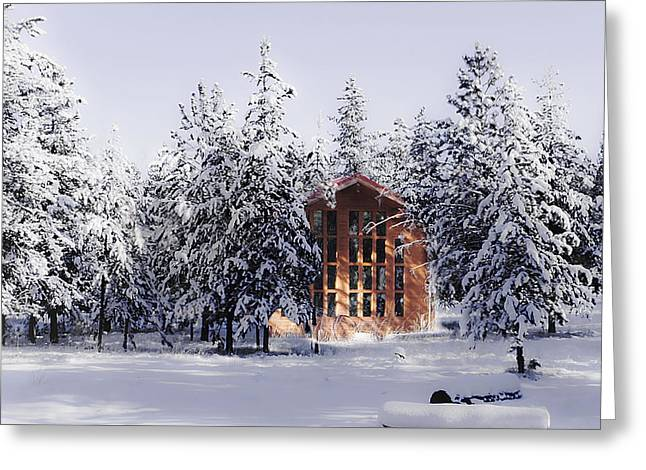 Greeting Card featuring the photograph Country Christmas by Janie Johnson