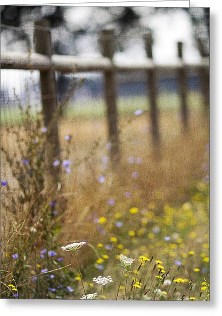 Country Fence Greeting Card by Rebecca Cozart