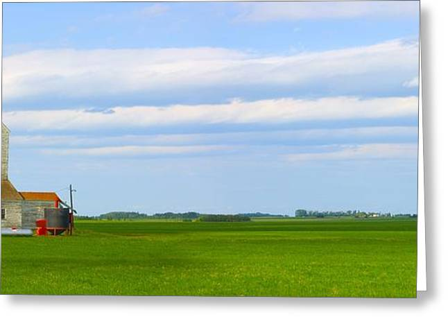 Country Grain Elevator Panoramic Greeting Card by Corey Hochachka