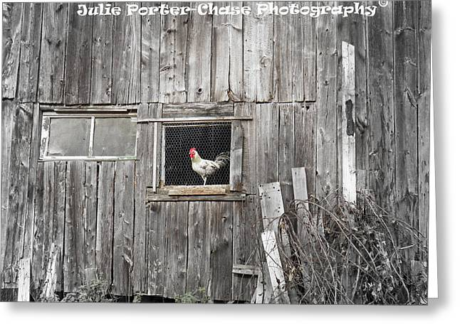 Country Living Greeting Card by Julie Porter-Chase