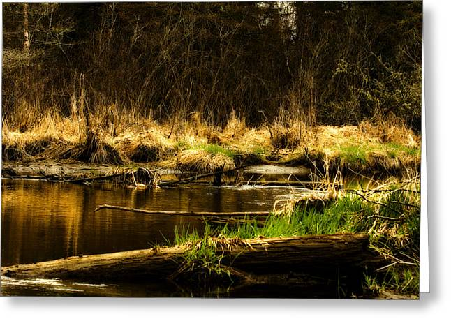 Country River Greeting Card by Gary Smith