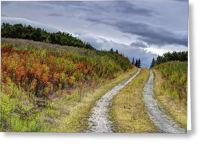 Greeting Card featuring the photograph Country Road In Fall by Michele Cornelius