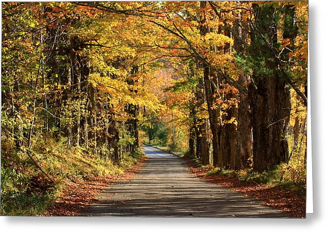 Country Roads In Autumn Greeting Card