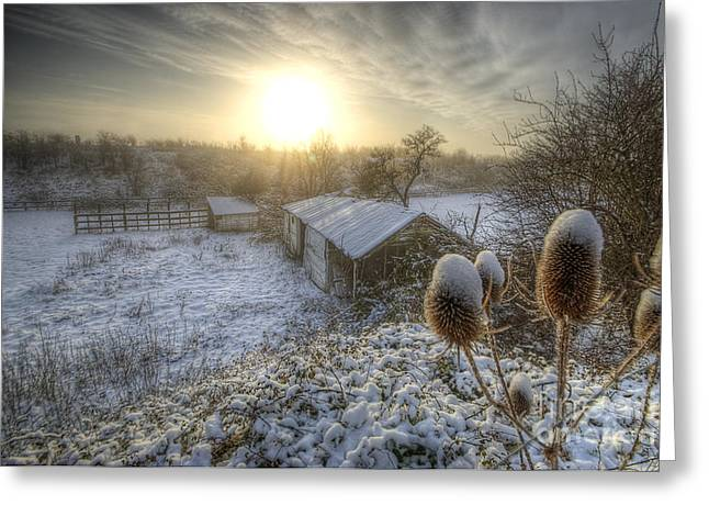 Country Snow And Sunrise Greeting Card by Yhun Suarez