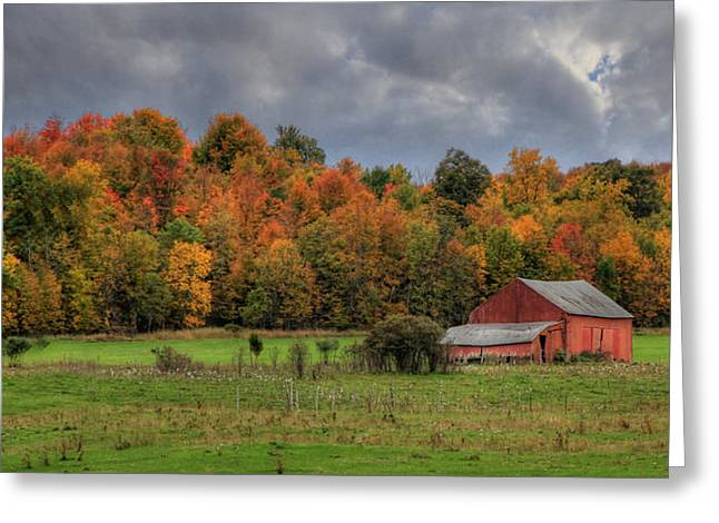 Country Time Greeting Card by Lori Deiter