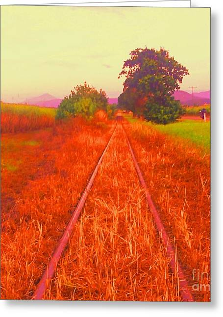 Country Tracks Greeting Card by David Peters