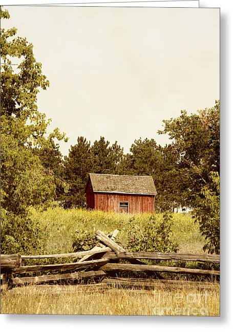 Countryside Greeting Card by Margie Hurwich