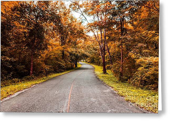 Countryside Road In Autumn Greeting Card by Mongkol Chakritthakool