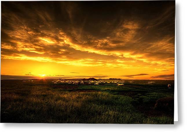 Countryside Sunset Greeting Card by Svetlana Sewell