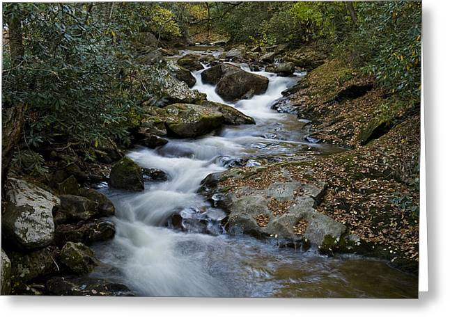 Courthouse Creek Greeting Card