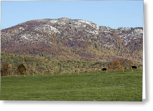 Cow Pasture Below Old Rag Mountain - Virginia Greeting Card