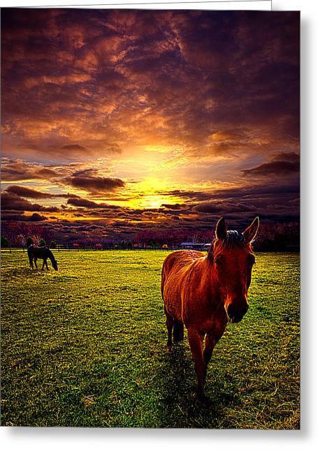 Cowboy's Delight Greeting Card by Phil Koch