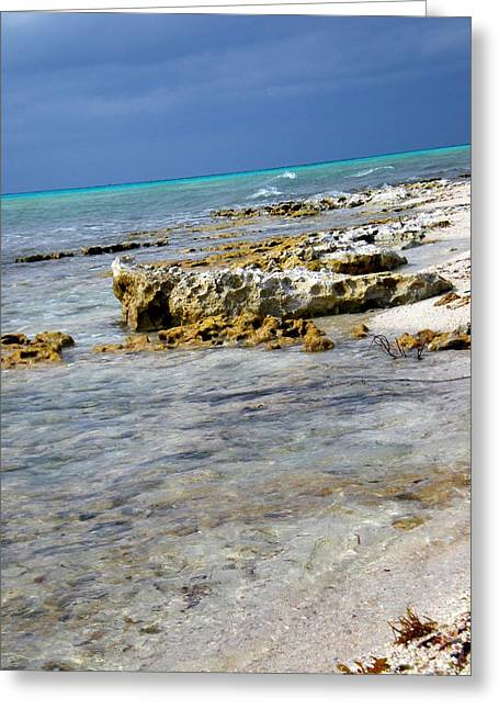 Cozumel Before Thunder Greeting Card by Danielle  Parent